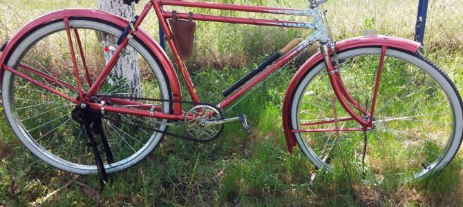 Raleigh DTT red