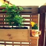 reclaimed wood garden