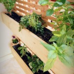 reclaimed wood garden
