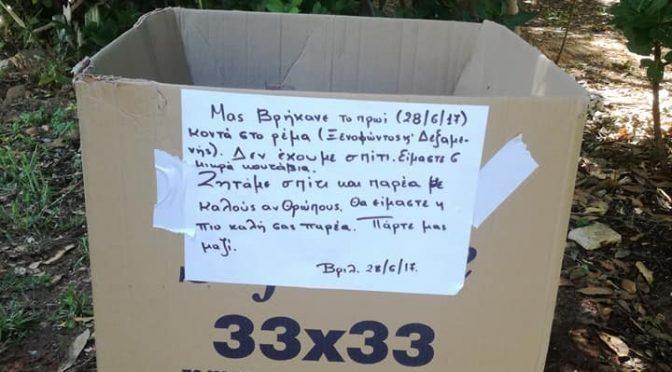 Εδώ και 3 μέρες βρέθηκαν 6 κουταβάκια, εκ των οποίων το ένα το πήρε κάποιος και έμειναν 5, μέσα σε μια κούτα στα Βριλήσσια, Δεξαμενής και Σοφοκλέους σε ένα μικρό αλσάκι.