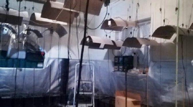Εντοπίσθηκε, από αστυνομικούς του Τμήματος Ασφάλειας Πεντέλης, ένα πλήρως εξοπλισμένο εργαστήριο υδροπονικής καλλιέργειας δενδρυλλίων κάνναβης στην περιοχή των Μελισσίων.