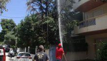 Φωτιά εκδηλώθηκε σε δένδρο, πριν από λίγο, επί της οδού Θερμοπυλών 30, στα Βριλήσσια.