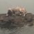 Τον γύρο του διαδικτύου κάνει από το βράδυ της Δευτέρας μια φωτογραφία από τοΜάτι, με έναν σκύλο που κάθεται πάνω σε έναν βράχο μέσα στη θάλασσα. Στην παραλία όπου έτρεξαν εκατοντάδες πολίτες για να σωθούν από τις φλόγες.