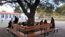 Εργασίες αποκατάστασης και βελτίωσης στις σχολικές εγκαταστάσεις αλλά και στους αύλειους χώρους πραγματοποιούνται από τα τεχνικά συνεργία και από εργολαβίες του Δήμου Κηφισιάς.