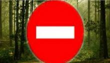 Να απαγορευτεί το κυνήγι στις περιοχές που επλήγησαν από τις πρόσφατες φωτιές ζητά με επιστολή του προς το Δασαρχείο Πεντέλης, ο Φιλοζωικός Σύλλογος Ραφήνας – Πικερμίου «Πήγασος»