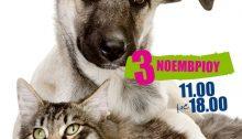Αγαπητοί φίλοι και μέλη,σας ενημερώνουμε ότι το μπαζάρ για το μήνα Νοέμβριο,θα γίνει το Σάββατο 3 του μηνός.