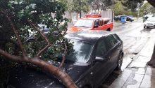 Από τον δυνατό αέρα έπεσε δέντρο πάνω σε σταθμευμένο αυτοκίνητο, στα Βριλήσσια.