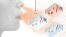 Τον τρόπο μετάδοσης τουκορωνοϊούσε κλειστούς χώρους όπως το σαλόνι ενόςσπιτιού, έναμπαρκαι μιααίθουσα σχολείουανάλογα με την εφαρμογή ή μη των μέτρων ασφαλείας επιχειρούν να αποτυπώσουν γραφήματα που ετοίμασε η ισπανική εφημερίδαEl Paisχρησιμοποιώντας μοντέλο που έχει αναπτύξει ο χημικός Χοσέ Λουίς Χιμένεθ στο πανεπιστήμιο του Κολοράντο.