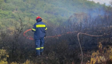 Πυρκαγιές ξέσπασαν χθες, Δευτέρα 5 Ιουλίου 2021, το μεσημέρι από κεραυνούς που έπεσαν στον Διόνυσο, κοντά στο Γερμανικό Νεκροταφείο Πεντέλης και στους πρόποδες της Πάρνηθας, στο Δήμο Αχαρνών.